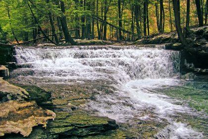 Fall Brook, Salt Springs State Park, Susquehanna County, Pennsylvania (16 March 2008)